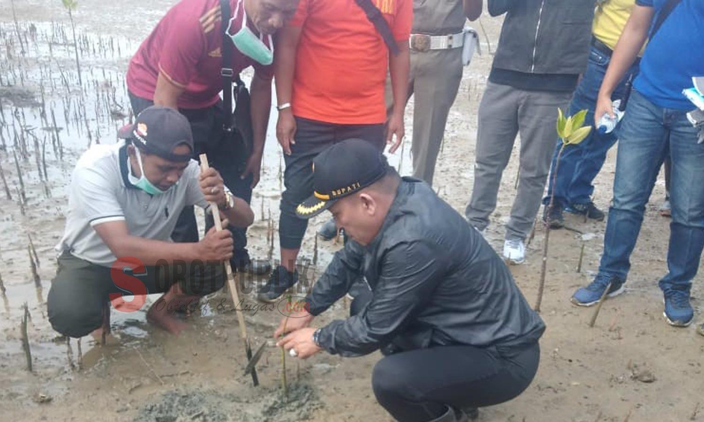 Bupati Sampang saat ikut serta tanam magrove